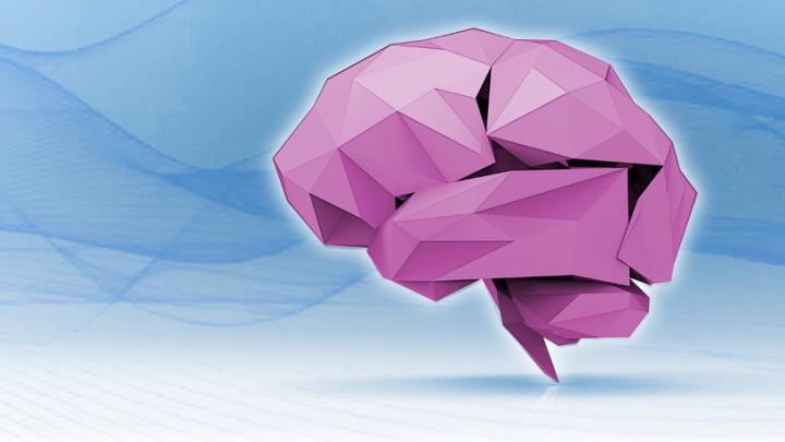 Origami brain